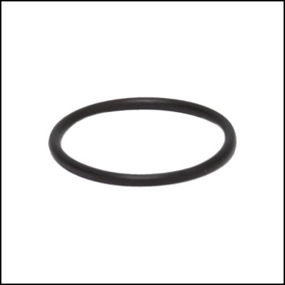 1269 Throttle Valve Bushing O-Ring (2 Req)